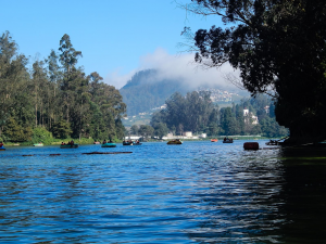 ooty lake - one of the beautiful places in ooty
